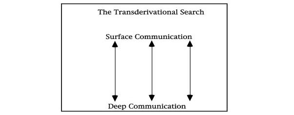 TransSearch